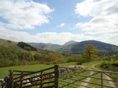 Scottish countryside #travel