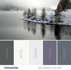 Color Palette ideas from 693 Winter Images Winter Colors, Spring Colors, Color Combos, Color Schemes, Water Images, Find Color, Color Inspiration, Bedroom 2018, Snow