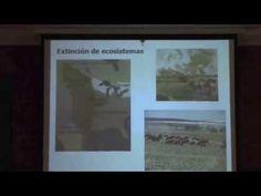 ECOLOGÍA VS. ECOLOGISMO O LA FALTA DE DERECHOS DE PROPIEDAD. Charla ofrecida por José Ramón Arévalo Sierra en el Gabinete Literario (11-03-2015). Más información en: http://bibwp.ulpgc.es/carlosbas/2015/03/07/ecologia-vs-ecologismo-o-la-falta-de-derechos-de-propiedad Charlas divulgativas [2014-2015] organizadas por el Dpto de Biología, el Aula de la Naturaleza, la Facultad de Geog. e Hist. de la ULPGC y el Gabinete Literario [Centro UNESCO de Gran Canaria] y coord. Juan Luis Gómez Pinchetti