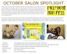 Salon Spotlight October 2012, Primrose Hill Pets