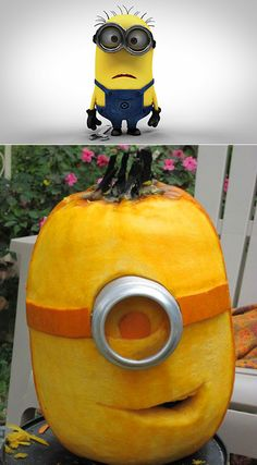 This is what happens when a Despicable Me Minion meets a giant pumpkin.