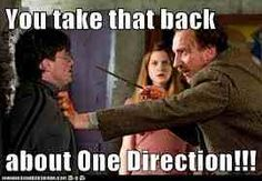 this is for @Rylie Villalpando you and your Harry Potter obsession combined with my obsession with One Direction.... :)