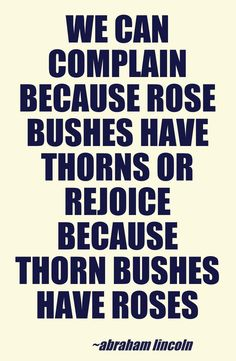 We can complain because rose bushes have thorns or rejoice because thorn bushes have roses.    - Abraham Lincoln