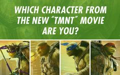 Celebrate World Turtle Day by taking this quiz. Teenage Mutant Ninja Turtles: Out of the Shadows is out in theaters everywhere June 3.