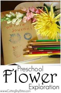 Preschool Flower Exploration.  Science and art activity for kids, great for spring or garden theme!