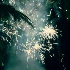 Window scenes!  #beautiful #scenes #crackers #fun #joy #dark #night #light #saynotocrackers #diwali #diwali2017 #day3 #iphone7plus #myclick #mumbai #india #toptags Say No To Crackers, Top Tags, Celestial, Flowers, Plants, Fun, Photos, Outdoor, Beautiful