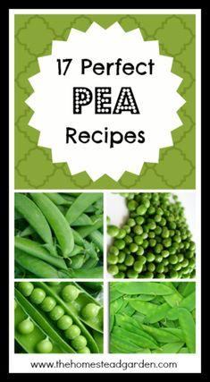 17 Perfect Pea Recipes - The Homestead Garden