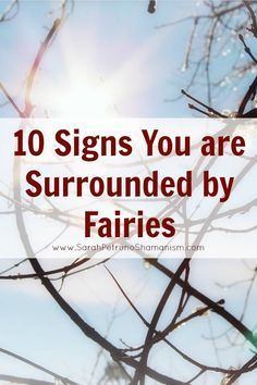 Signs that fairies are visiting you!