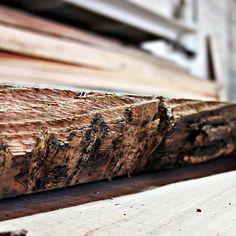 Любим дерево, выбираем самое лучшее для дверей #doorsbrothers.  #doorsbrothers #loft # лофт #двери #двериназаказ #интерьер #interior #дизайнинтерьера