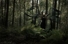 If you go down in the woods tonight... inspiration for photoshoot