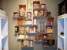 Collection - Display - Tips - seashell collection display1 Creative Tips for Displaying Collections With Style
