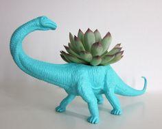 Des plantes qui poussent dans de vieux jouets