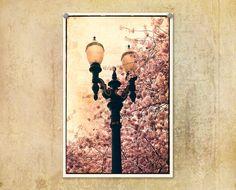 Portland Oregon Lamp Post and Springtime by ThePDXPhotographer, $30.00