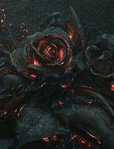 As part of a reference photoshoot for an illustration project by Warsaw-based creative studio Ars Thanea, a bouquet of roses was set on fire and photographed as they smoldered in the dark. Dark Fantasy, Fantasy Art, Lizzie Hearts, Art Noir, Arte Obscura, 3d Rose, Gothic Art, Dark Gothic, Cool Art