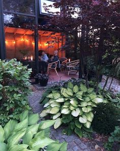 Materialspecification till min idéträdgård på Sofiero — Almbacken Trädgårdsdesign Zen, Pergola, Plants, Handmade, Flora, Craft, Arbors, Plant, Arm Work