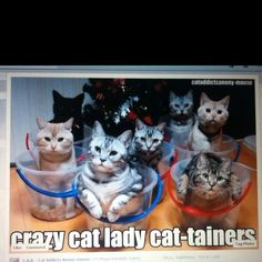 @Christie Sugrue and @Mary Lindahl thought you two would enjoy this lol