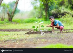 boy sitting on farm and showing plant Photo Agriculture Photos, 3d Assets, Icon Pack, Photo Illustration, Free Design, Vector Free, How To Become, Photoshop, Plant
