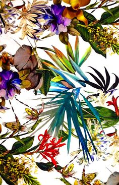 textile graphic print - Google Search