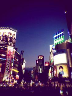 It's better as a vertical, Tokyo, Japan, 2014, photograph by Oyl Miller.
