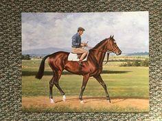 "Nijinsky II Liam Ward Photo 15"" x 12"" from oil painting Horse Racing | eBay"