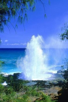Spouting Horn, #Kauai #Hawaii.  It was really cool!  Loved it!