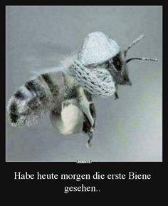 Habe heute morgen die erste Biene gesehen.. | Lustige Bilder, Sprüche, Witze, echt lustig