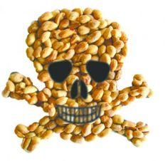 Dangerous Dish: Food Allergies (04/12)