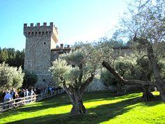 Castello di Amorosa grounds | Napa California