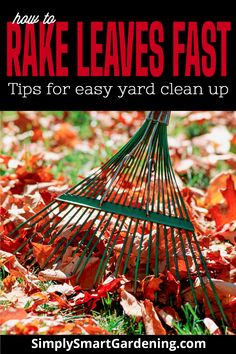 Fall is the perfect time to get a jump on all the garden chores. You are going to have a HUGE pile of leaves when fall arrives! Discover how to rake leaves fast with these clever hacks and cut your fall leaf cleanup time in half! Check out the full list of tips for easy yard clean up that will leave your lawn and yard looking tidy and presentable this fall. Click to get more details. #simplysmartgardening #fallleafcleanup #gardenchores Landscape Maintenance, Garden Maintenance, Organic Gardening, Urban Gardening, Vegetable Gardening, Gardening For Beginners, Gardening Tips, Fall Clean Up