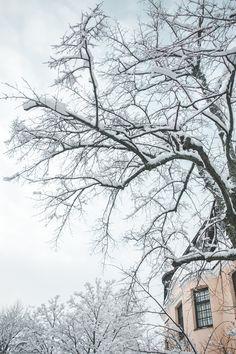 Helsinki, Snow, Seasons, City, Outdoor, Beautiful, Style, Winter, Outdoors