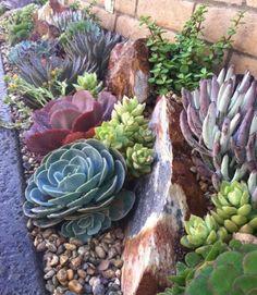 un coin naturel longeant un mur en briques, galets et grosses pierres, plantes succulentes, idée de rocaille fleurie