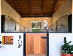 """Arabian horses live the sweet life at Hillard Bruce, where the stables go hand-in-hand with the vineyards. Photo by Amy Barnard, from """"They Love Horses, Don't They: Santa Barbara's Equestrian Lifestyle,"""" in the spring 2017 issue of Santa Barbara Seasons. http://sbseasons.com/bBDII #sbseasons #sb #santabarbara #SBSeasonsMagazine #HilliardBruce #SBArchitecture #SBHorses To subscribe visit sbseasons.com/subscribe.html"""