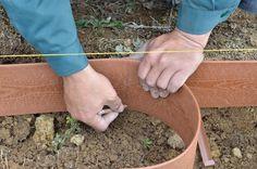ガーデニング初心者さん必見! 初めての本格的な「バラの花壇」づくり[完全保存版] | GardenStory (ガーデンストーリー) Gardens