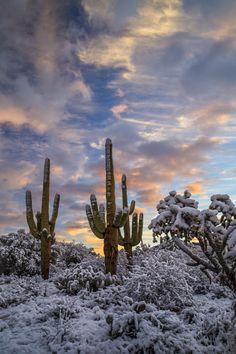 Artistic-realistic nature - 💙 Tucson snowmen on by Crystal Stephens,. Snow In Arizona, Lost Paradise, Sun Worship, Winter Scenery, F 16, Beautiful Sunrise, Photo Location, Natural Wonders, Tucson