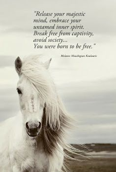 free spirit quotes | Release your majestic mind, embrace your untamed spirit. Break free ...