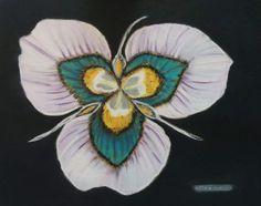 Flor Africana. Técnica Pastel  Papel Canson 70x50