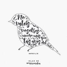 Islas de Misericordia by Sarai Llamas - Mateo 6, 26 #Biblia #Bible