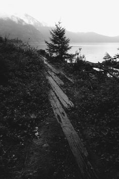 Maplemusketeer: Howe Sound in black and white