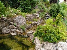 přírodní zahrada - Hledat Googlem