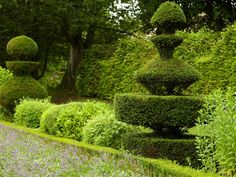 The artful pruning known as topiary has captured imaginations for centuries