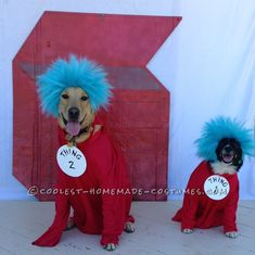 Dog-tor Seuss Would Be Happy With These Things... Coolest Halloween Costume Contest