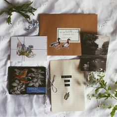 Recipes and birdies for my lovely flower Ivy :) Snail Mail Pen Pals, Pen Pal Letters, Decorated Envelopes, Envelope Art, Handwritten Letters, Happy Mail, Letter Writing, Mail Art, Bullet Journal
