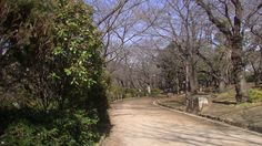 #japan#japon#travel#park