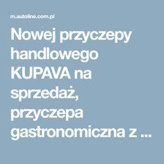 Nowej przyczepy handlowego KUPAVA na sprzedaż, przyczepa gastronomiczna z Ukrainy, kupić przyczepę inne, ZL13556