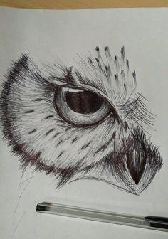 owl sketch by cdkingof1982 on DeviantArt