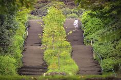Elegant Japanese Lady climbing park stairs  from www.jonathanphotos.com