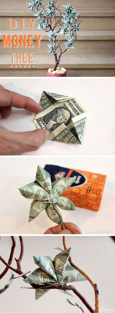 Money does grow on trees! At least it does with this amazing DIY gift for any graduating student. Celebrate the grad with this beautiful money tree. Step by step how to instructions here: www.ehow.com/...
