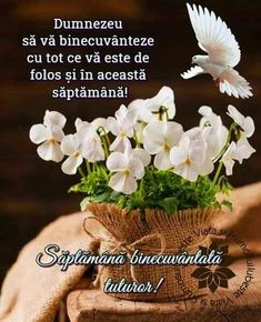 Spiritual Quotes, Good Morning, Blessed, Homemade, Blessings, Facebook, Happy Day, Spirit Quotes, Buen Dia