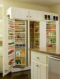 Kitchen Pantry Design Ideas Built In Pantry Shelving Kitchen Pantry Design, Kitchen Pantry Cabinets, New Kitchen, Kitchen Decor, Organized Kitchen, Kitchen Ideas, Awesome Kitchen, Kitchen Shelves, Awesome House