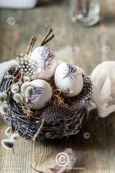 Moderní velikonoční zátiší s malovanými vajíčky, kočičkami a pírky  Painted Easter eggs in nest with feathers and pussy willows